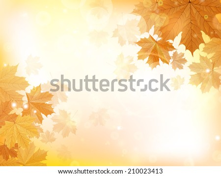 Autumn design background with leaves falling from the tree. EPS10 - stock vector