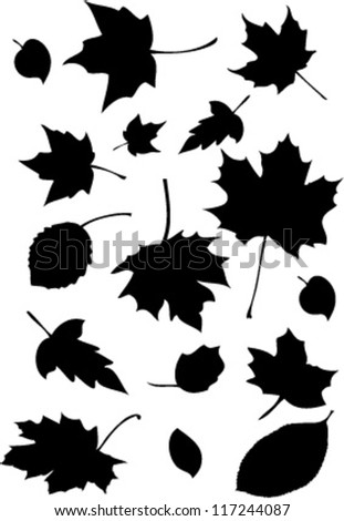 Autumn leaves black - stock vector