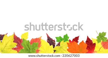 Autumn Leaves Border, Vector Illustration - stock vector
