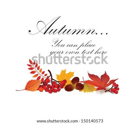Autumn maple leaf vector frame with copy space on white background. Fall set.  - stock vector