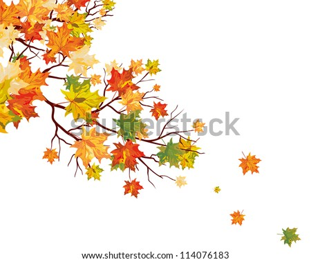 Autumn maple leaves background. Vector illustration. - stock vector
