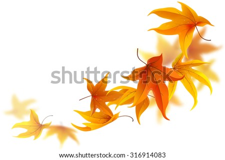 Autumn maple leaves falling and spinning on white background - stock vector