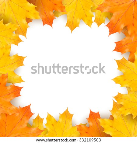 Autumn maple leaves on white background - stock vector