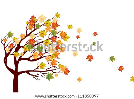 Autumn maple tree with  falling leaves. Vector illustration. - stock vector