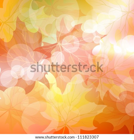 Autumn maples falling leaves background. Vector illustration with trancparency EPS10. - stock vector