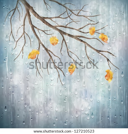 Autumn season rainy weather artistic design. Tree branch, yellow leaves, transparent water drops on foggy gray blur natural wallpaper background. Beautiful wet autumn fall realistic vector landscape - stock vector