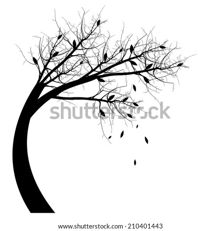 Autumn Tree silhouette isolated on white - stock vector