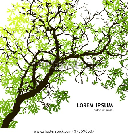 Background tree branches. Vector - stock vector