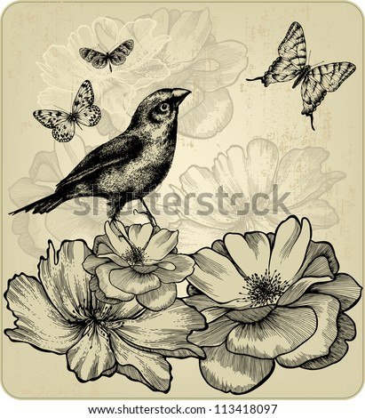 Background with blooming roses, birds and flying butterflies. Vector. - stock vector