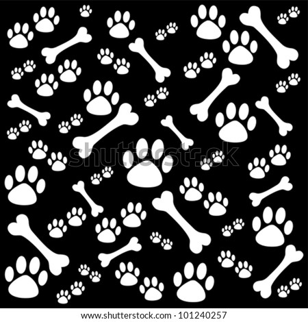 Dog Footprints Stock Photos Images Amp Pictures Shutterstock