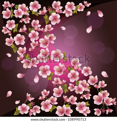 Background with pink sakura blossom - Japanese cherry tree, greeting or invitation card. Vector illustration - stock vector
