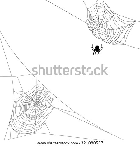 Background with two spider webs isolated on white - stock vector