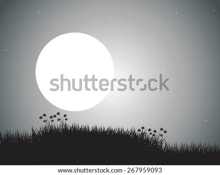 backgrounds night sky with stars and moon,vector - stock vector