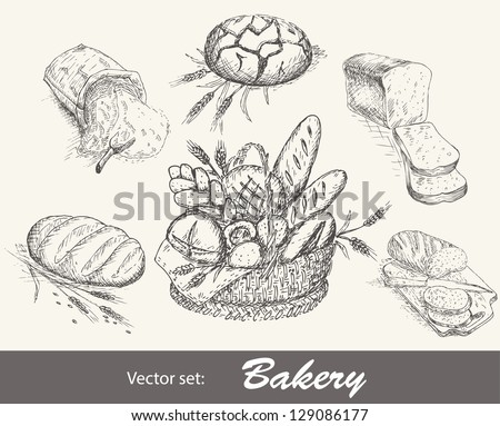 Bakery vector set. Collection of bread - stock vector