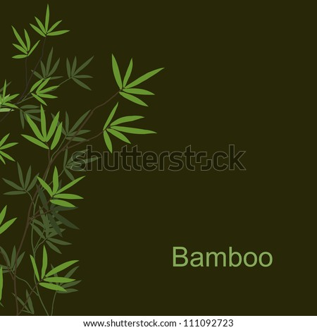 Bamboo dark background for design, vector image - stock vector