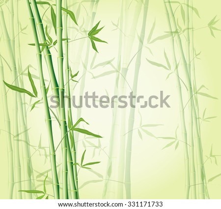 bamboo forest background EPS 10 illustration - stock vector