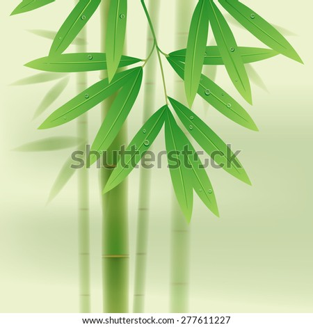 Bamboo stems and leaves on light green background. Vector illustration - stock vector