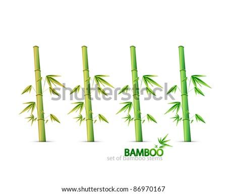 Bamboo stems. Vector collection - stock vector