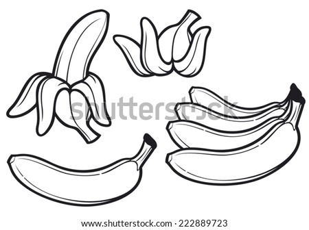 banana fruit (peeled banana and banana peel) - stock vector