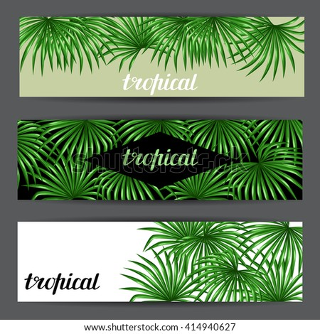 Banners card with palms leaves. Decorative image tropical leaf of palm tree Livistona Rotundifolia. Image for holiday invitations, greeting cards, posters, brochures and advertising booklets. - stock vector