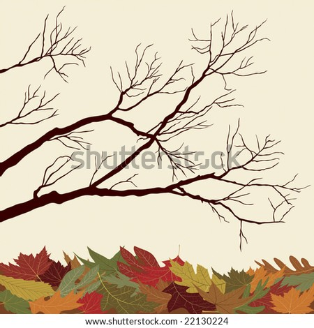 Bare Branches with Fallen Leaves - stock vector