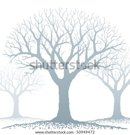 Bare tree - stock vector