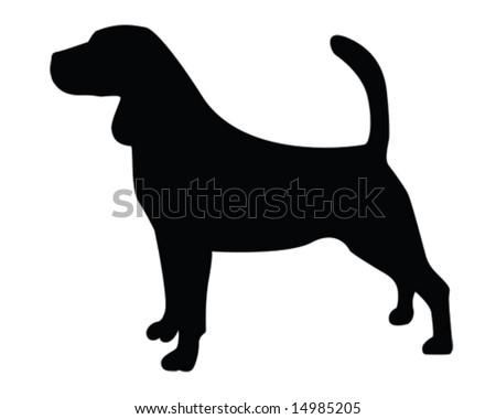 beagle vector illustration - stock vector