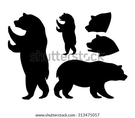 Bear digital design, vector illustration eps 10 - stock vector