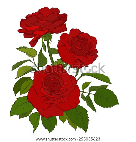 Beautiful bouquet of roses isolated on white. Perfect for background greeting cards and invitations of the wedding, birthday, Valentine's Day, Mother's Day. - stock vector