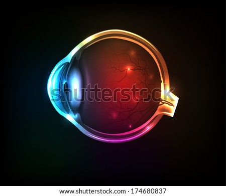 Beautiful colorful human eye on a dark background. - stock vector