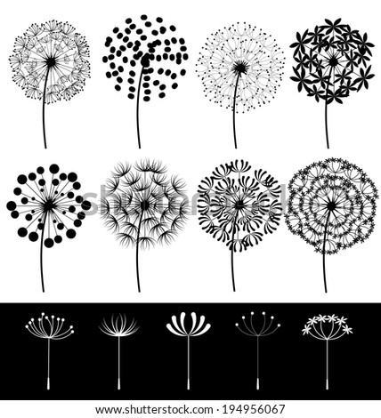 Beautiful dandelions set vector - stock vector