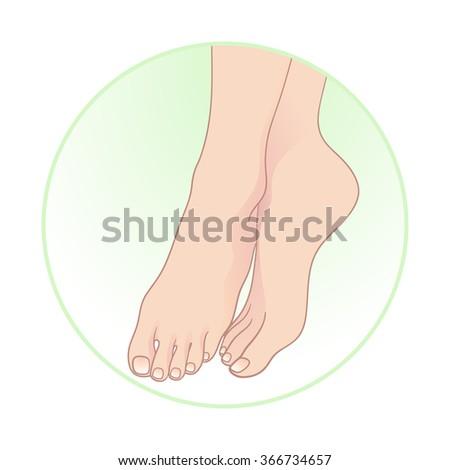 Beautiful female feet. Body care icon design vector illustration - stock vector