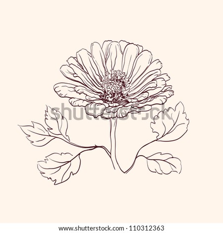Beautiful Flowers  vintage drawing vector illustration  isolated - stock vector