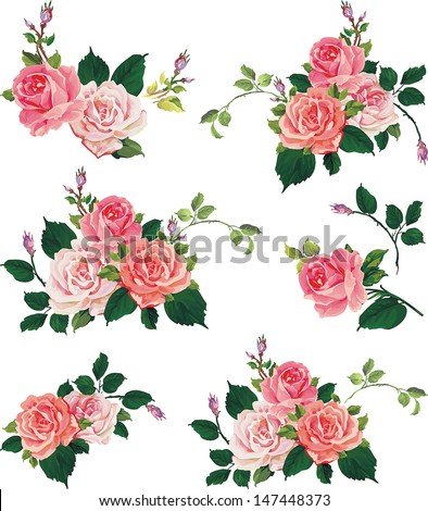 Beautiful isolated flowers on the white background. Set of different beautiful floral design elements - stock vector