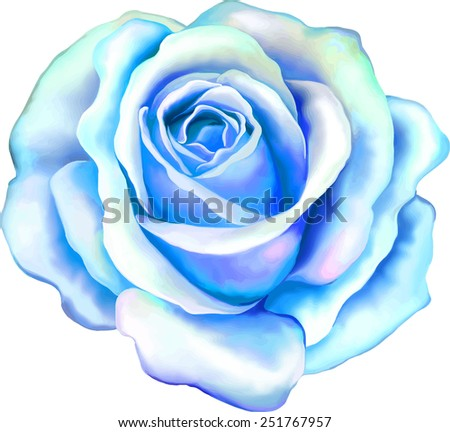 Beautiful light blue Rose Flower isolated on white background. Vector illustration - stock vector