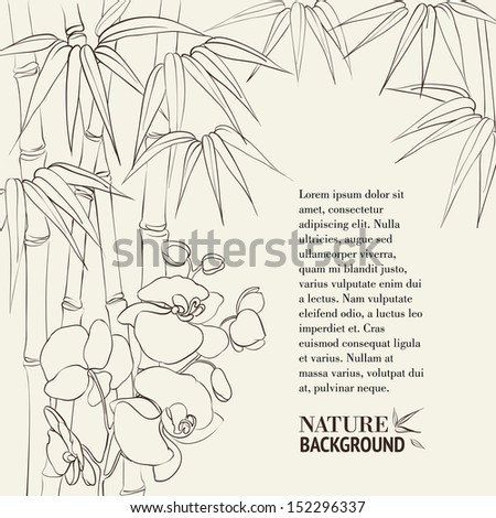 Beautiful orchid flowers and bamboo isolated on sepia. Vector illustration. - stock vector