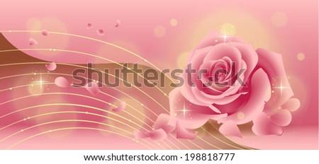 Beautiful pink rose - stock vector