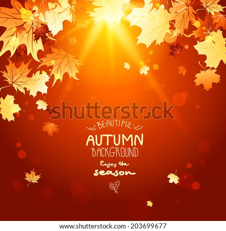 Beautiful shining autumn backdrop with falling maple leaves and sunlight. Place for text - stock vector