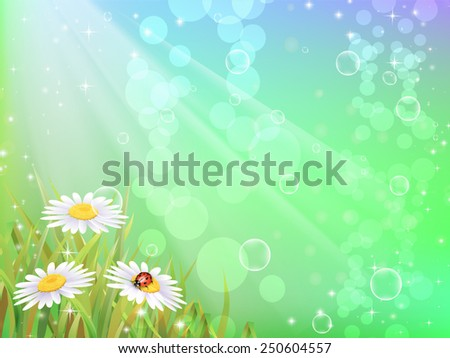 Beautyful camomiles. Vector of spring background with gradient and radiance. - stock vector