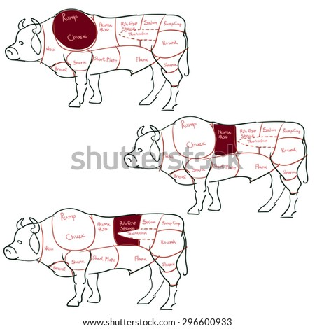Beef cut or cuts of beef vector - stock vector