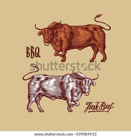 beef farm design template. engraving lettering - stock vector