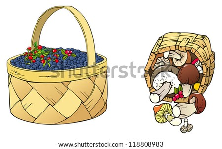 Berries and mushrooms in the baskets, vector illustration - stock vector