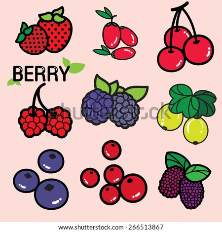BERRIES Various kinds of colourful fresh berry, berries in general are considered a good source of nutrient and provide health benefits. Strawberry, blueberry, raspberry, etc.   - stock vector