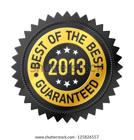 Best of the Best 2013 label. Vector. - stock vector