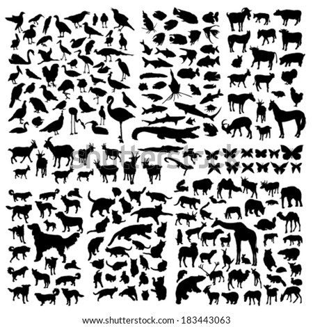 Big animals silhouettes set - stock vector