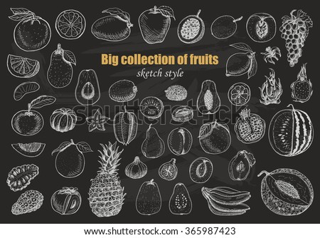 Big collection of fruits on dark background. Vector  illustration for your design - stock vector