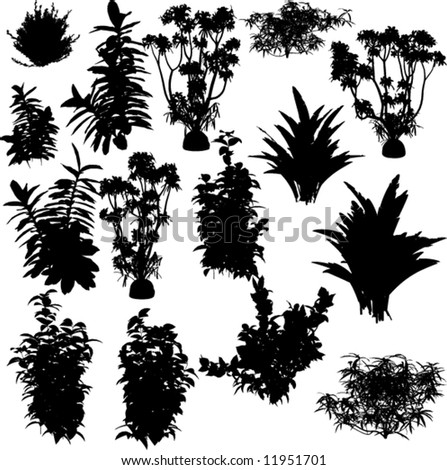 Big collection of plants silhouettes - stock vector