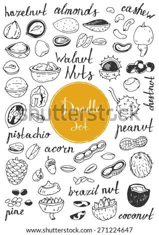 Big doodle set - Nuts - stock vector