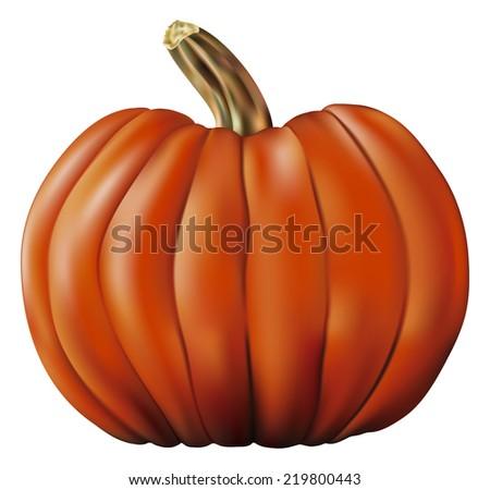big pumpkin - stock vector