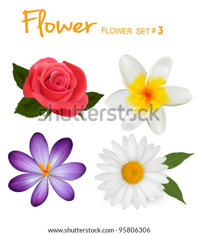 Big set of beautiful colorful flowers. Design flower set 3. Vector illustration. - stock vector
